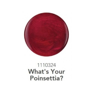 1110324 What's Your Poinsettia