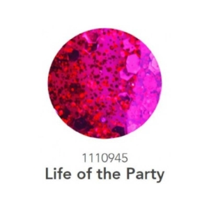 1110945 Life Of The Party