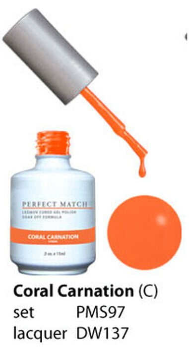Perfect Match Coral Carnation PMS97